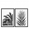 Постер Prints Palm Leaves set of 2 112195 Eichholtz НИДЕРЛАНДЫ